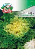 SEME ENDIVIJA ESKARIOL ZELENA 1236