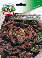 SEME SOLATA MEREVIGLIA 1212